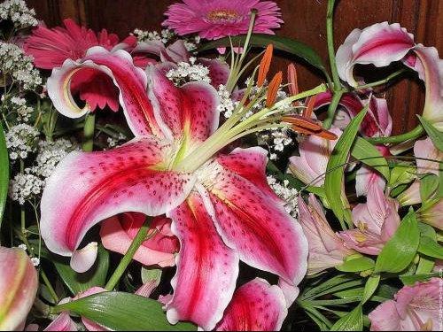 galerie-membre,fleur-bouquet,bouquet