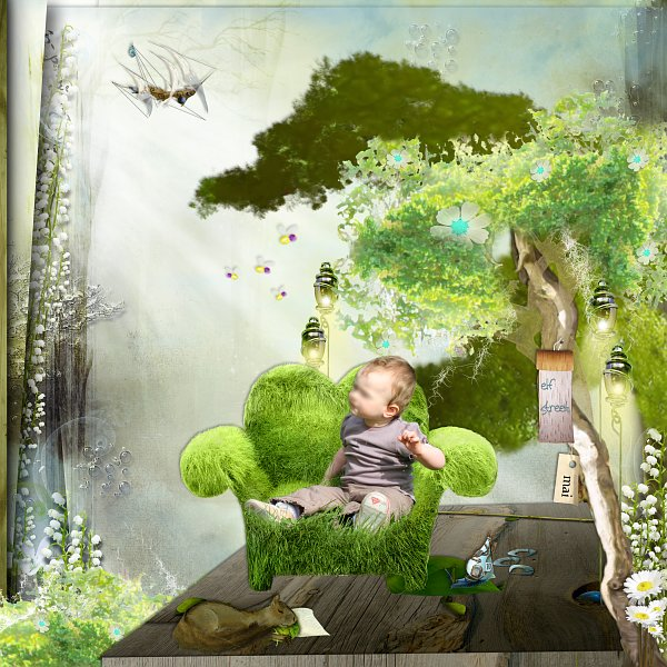 0905 - maison dans les arbres