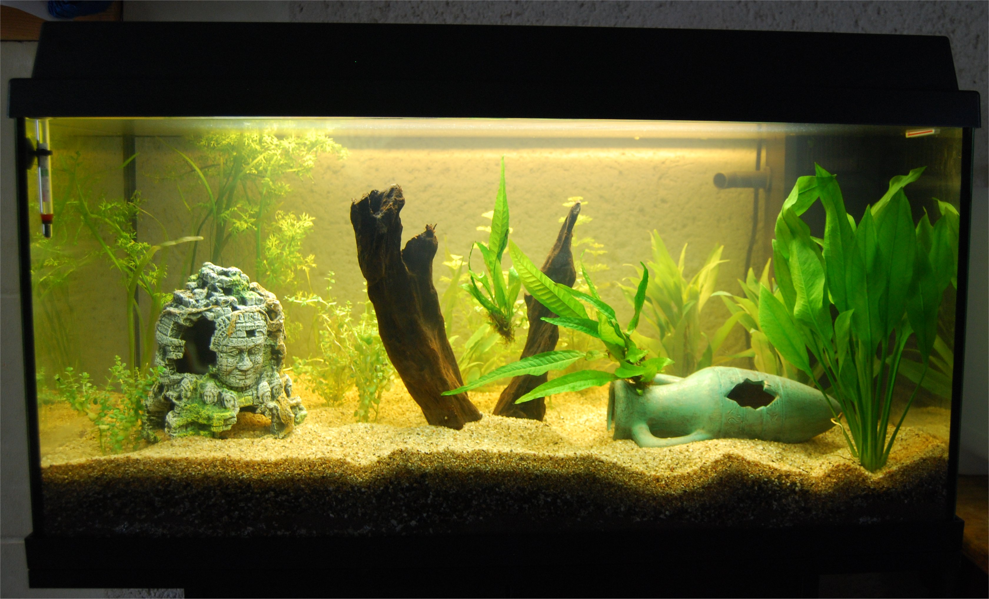 divers-aqua2-big