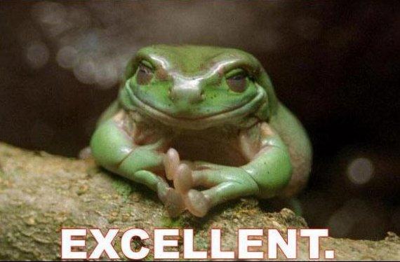 frog-excellent-1