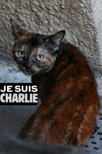 Au-refuge-01-bis-CharlieM