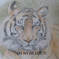 carte-tigre