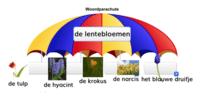De lentebloemen (woordparachute)
