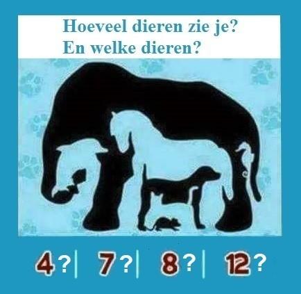 NL welke dieren 02