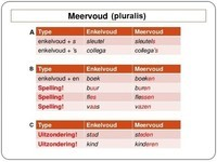 Meervoud (pluralis)