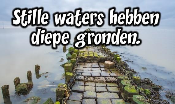 Er Schuilt Een Addertje Onder Het Gras Nederlandse