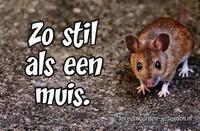 Zo stil als een muis