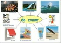 DE ZOMER (geïllustreerde woordenschat)