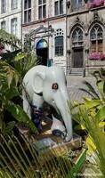 Eléphants (jardin éphémère), Grand-Place de Mons (05)