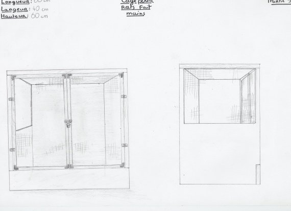 Cage rat (details) 1