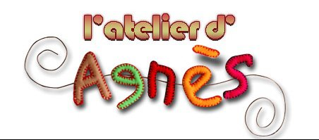 logo-agnes