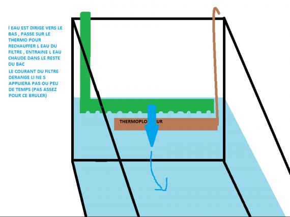Thermoplongeur horizontal + filtre avec cane rejet percée obligatoire pour que la circulation de l e