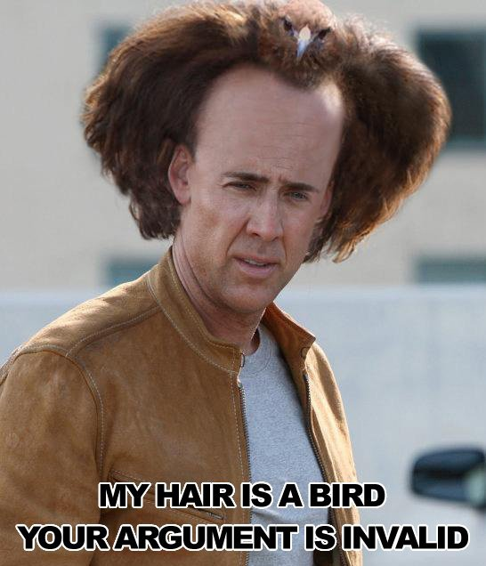 Nicholas-cage-hair-is-a-bird-argument-invalid