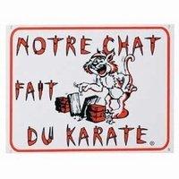 Cha-tou-net_Notrechatfaitdukarate_4E95aulieude6E60