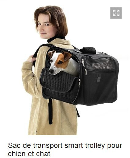 _SAC_SmartTrolley_chien-chat_L55cmxP25xH38_59E48_AnimalerieBoutique__