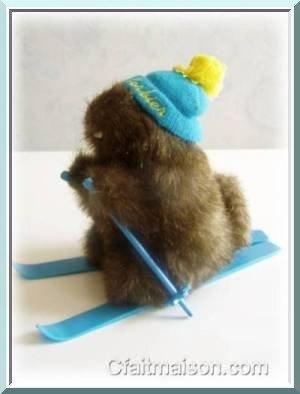 marmotte-ski