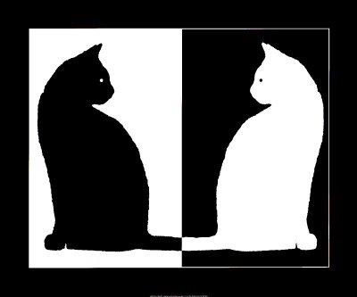 chats-noir-et-blanc__allposters_fr