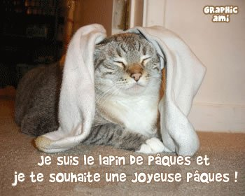 lapin-chat-paques-souhaite-joyeuse-fete__louvito_over-blog_com
