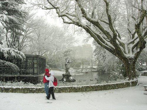 neige_2006_avignon