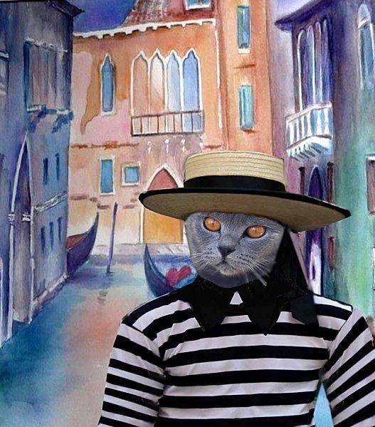 mon-chat-a-Venise-bis-copie-1