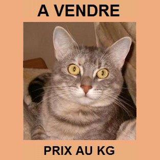A-VENDRE-ERA_PRIX-AU-KG
