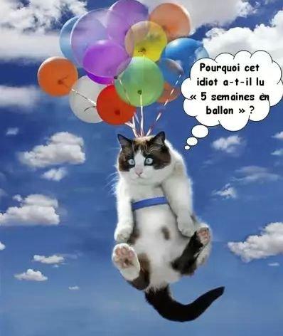 5semaines_en_ballon