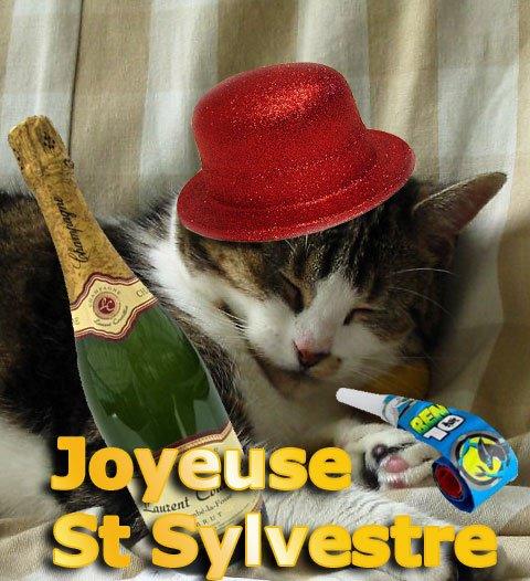 coquine-st-sylvestre
