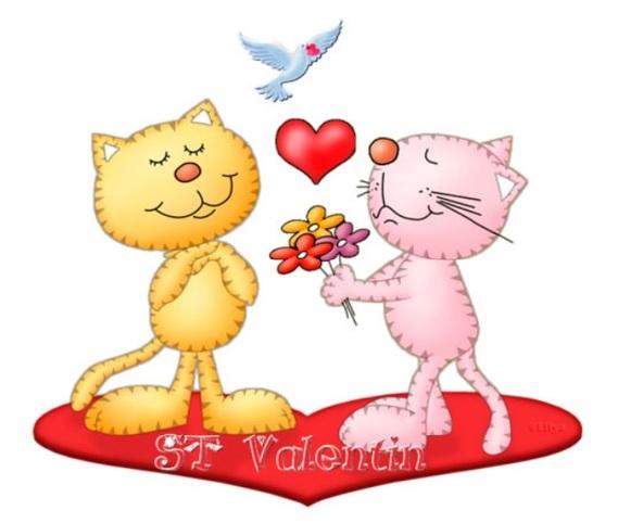 St-Valentin_2chats