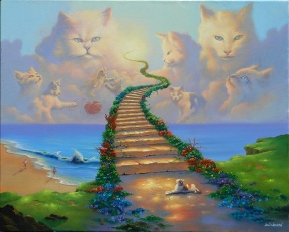 all-cats-go-to-heaven