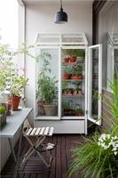 aménagement-balcon-étagere-verre-plantes
