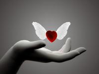 main-coeur-ailes