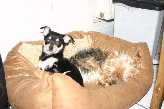 Gigi&Romi