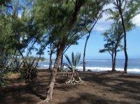 plage de sables noirs