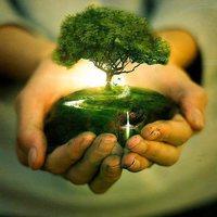 L'arbre de l'espoir