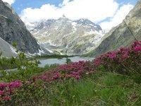 le pré de madame Carle Hautes Alpes