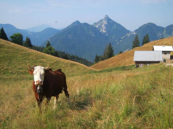 vacheresse-(haute-savoie)-photo-prise-par-philippe-manillier