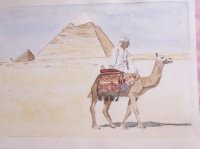 chamelier Egyptien