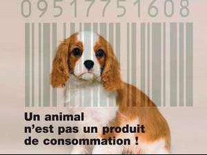 ciot non cosomation