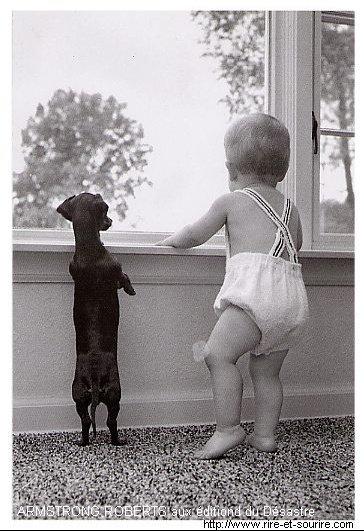 Un_bebe_etun_chien