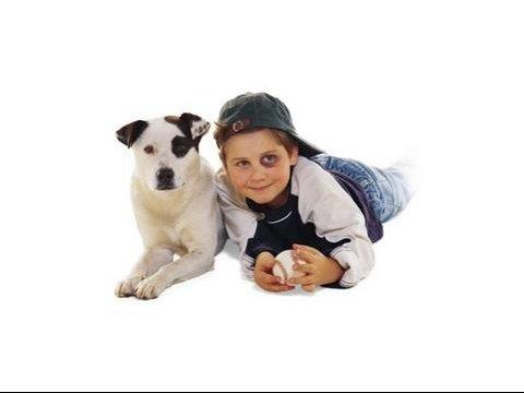 chacun_son_chien2