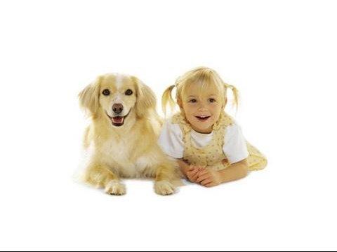 chacun_son_chien