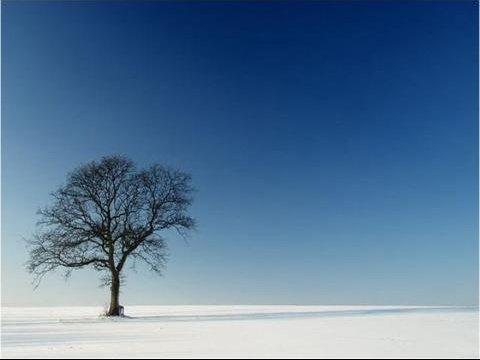 Winter%20day