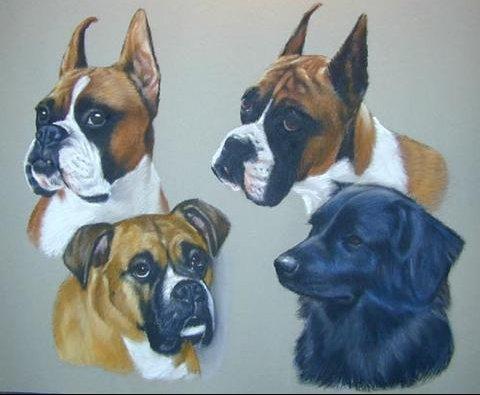 4_dogs_pastel