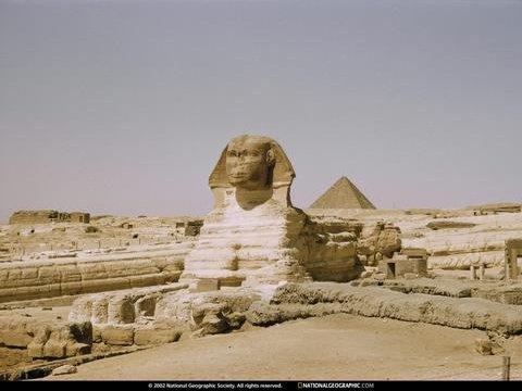 egyptshinx
