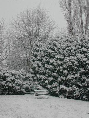 jardinsslaneige