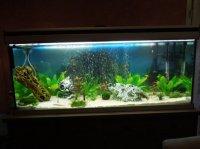 aquarium tout neuf