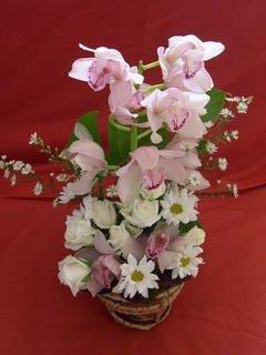 fleursflo4404forum