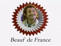 "Certification ""Beauf de France"""