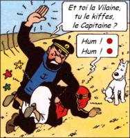 Et toi la Vilaine, tu le kiffes, le Capitaine ?