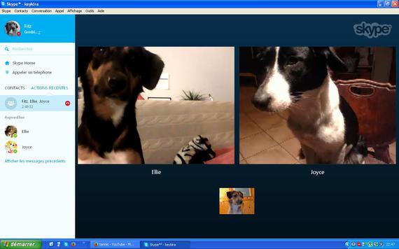 Skype avec les frangines